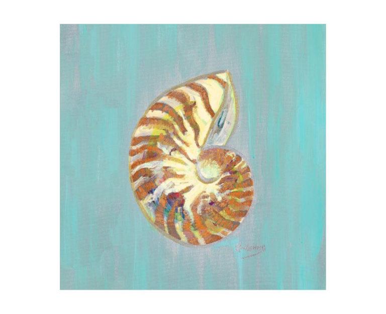 Tiger Shell Artwork